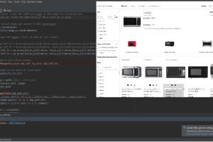 Portfolio for Professional Software Engineer