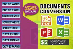 Portfolio for I will convert PDF to word, excel etc..