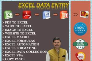 Portfolio for Excel Data Entry to a Expert Level