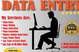 Portfolio for Excel data entry in 2 hours