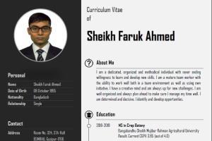 Portfolio for CV writer