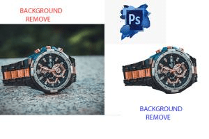 Portfolio for Background Remove and Clipping Path 7/24