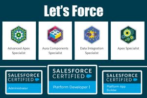 Portfolio for Salesforce Development