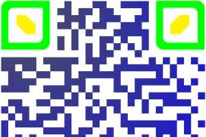 Portfolio for QR CODE DESIGN