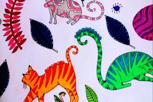 Portfolio for tweaky colors