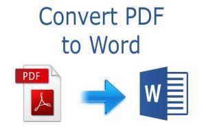 Portfolio for I will do convert PDF to word conversion