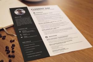 Portfolio for I will design professional cv resume