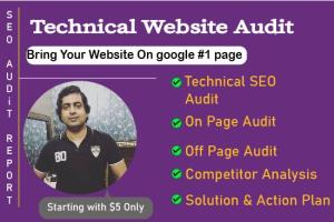 Portfolio for Website Audit Report with Action Plan