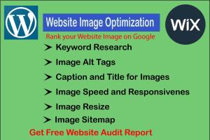 Portfolio for Image Optimization(SEO) for Any Website