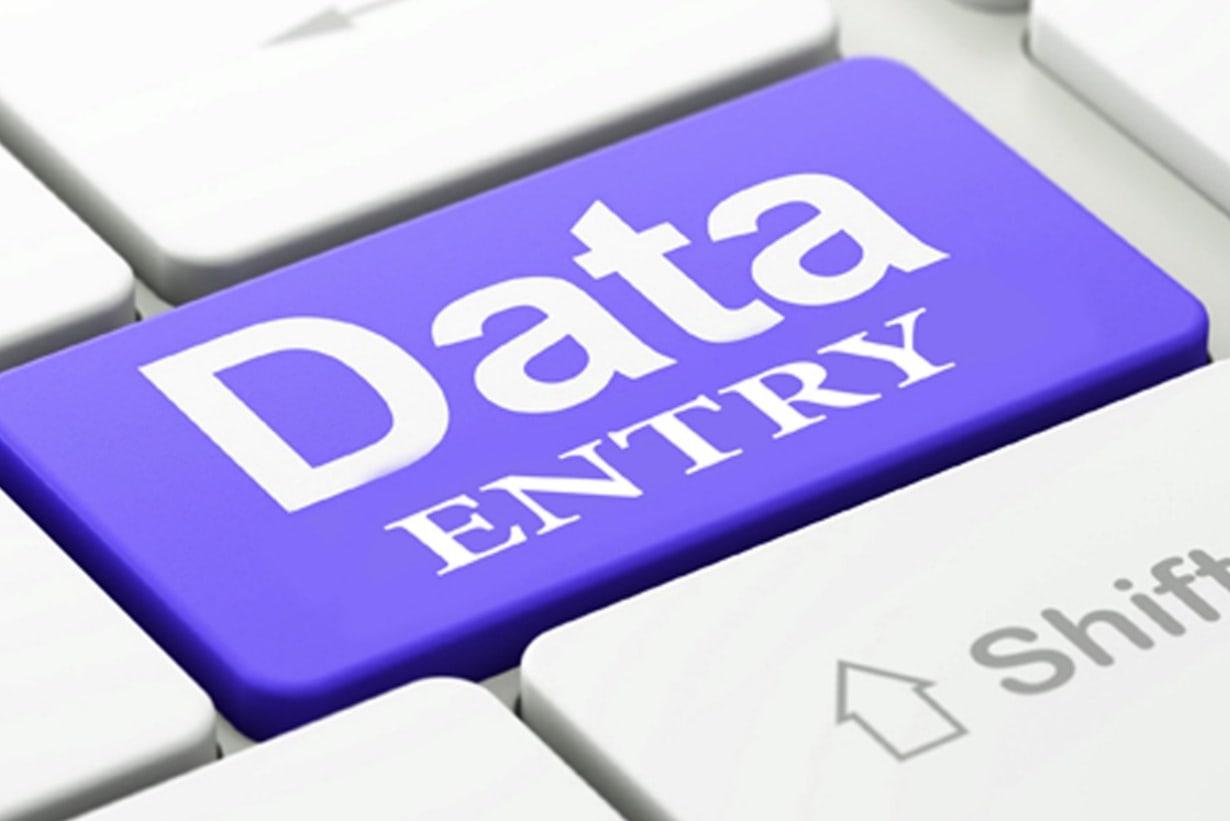 Portfolio for Data Entry & Translation