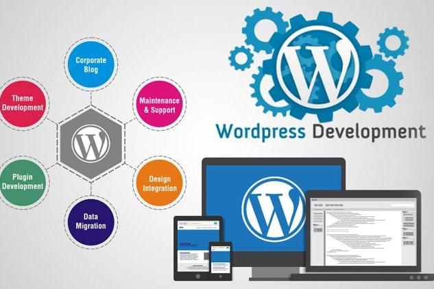 Portfolio for WordPress Websites Development