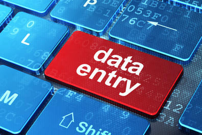 Portfolio for Data Entry