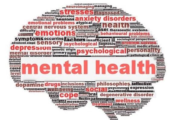 Portfolio for Mental Health Provider