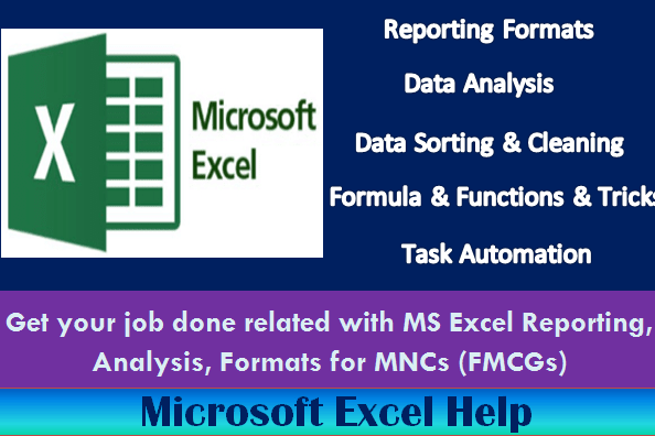 Portfolio for Develop Microsoft Excel Reporting Format