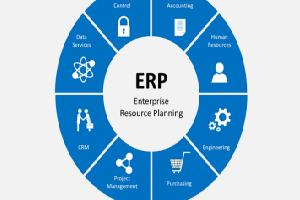 Portfolio for ERP,Enterprise&Sales Solutions IT Expert