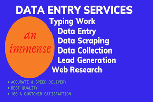 Portfolio for Data Entry Expert