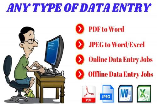 Portfolio for Senior Data Entry