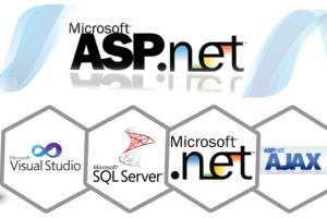 Portfolio for Dot Net Developer