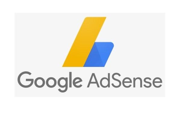 Portfolio for Google Adsense Expert