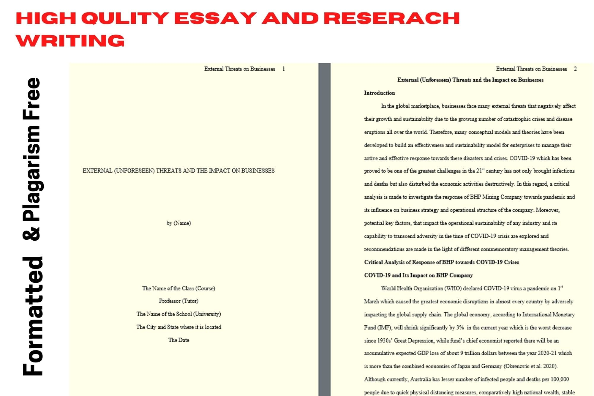 Portfolio for Essay and research report writing