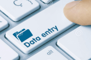 Portfolio for Professional Data Entry Expert