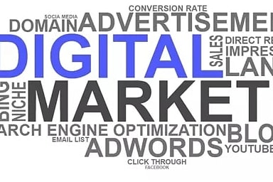 Portfolio for Digital marketing specialist