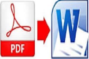 Portfolio for Convert PDF into word Excel PPT IMAGE