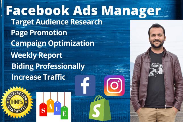 Portfolio for Facebook Ads Marketing Manager