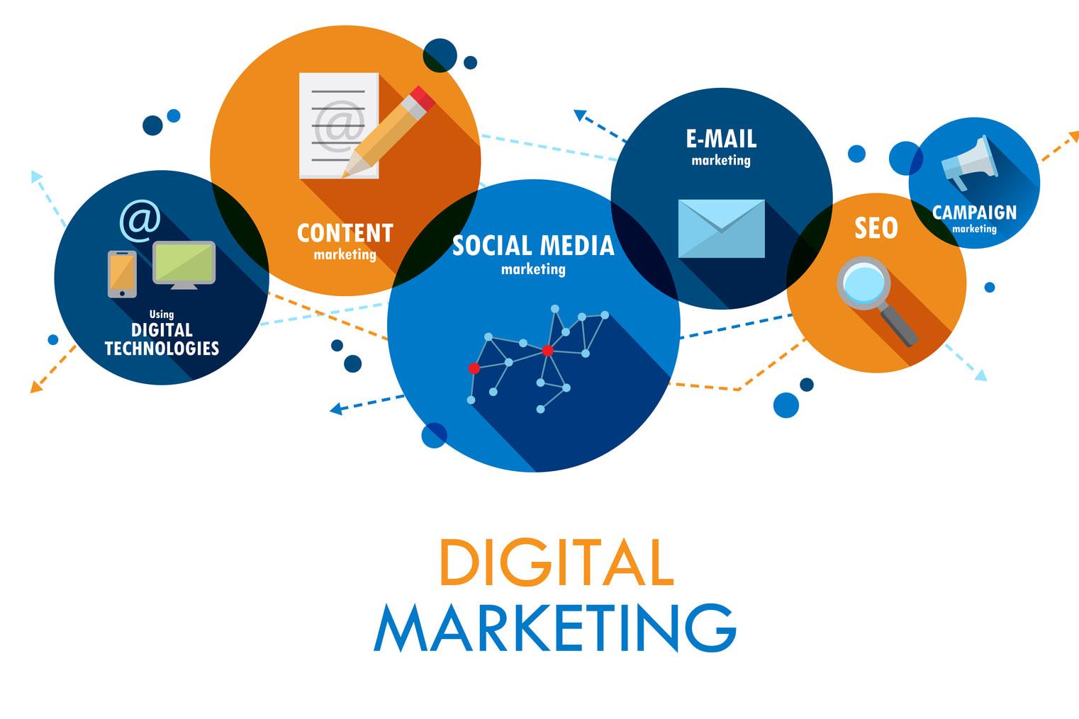 Portfolio for Digital Marketing for Beauty Industry