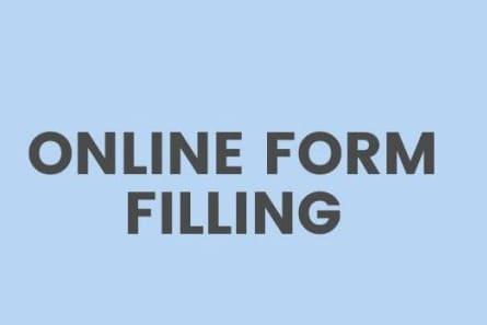 Portfolio for Data Entry, Form Filing, Captcha Typist,
