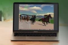 3D Application: 3D Horse Racing