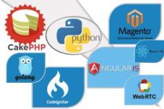 Codeigniter, Laravel, CakePHP, Golang,