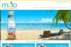 Website Development for Mojo Organics