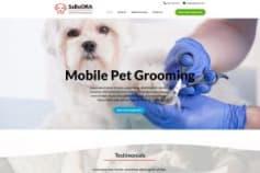 sabooraaz.com Small Business Website