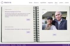 Company portfolio development
