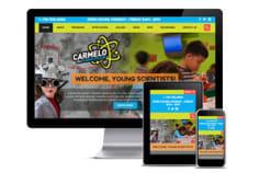 Wordpress CMS for School