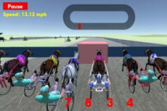W2W Harness Racing