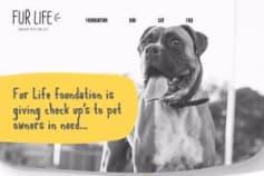 Fur Life Divi Website