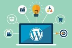 Wordpress Expert, Wordpress Design