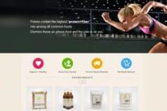 PHP/Wordpress Portal