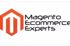 Magento Extension Developer