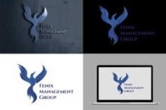 Fenix Management Group