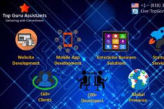 Process and Methodology followed @ Top Guru Assistants