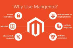 Magento eCommerce Website & Extensions