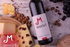 Logo Design for a Wine brand
