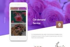 OnDemand-Delivery App
