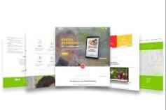 UI Design and Wordpress Development