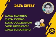I will Do Any kind of Data typing