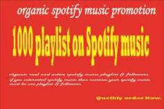 i work spotify music promotion