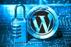 I will make your Wordpress site 100% SECURE